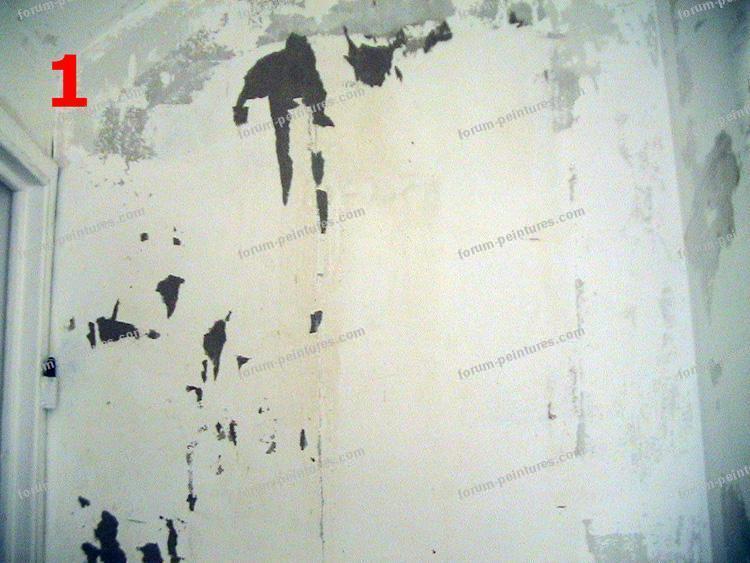 renovation des murs avant peinture 1