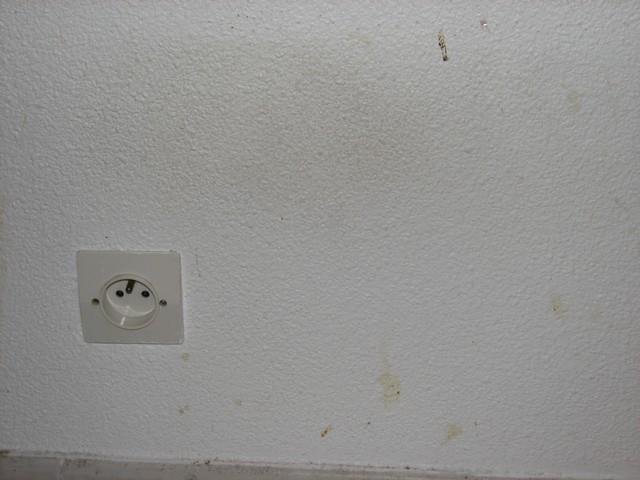 Conseil peinture bricolage choix mat riaux maison for Nettoyer taches moisissures mur