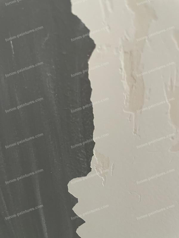 tapisserie peinture ou enduit